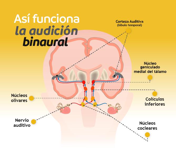 audicion-binaural