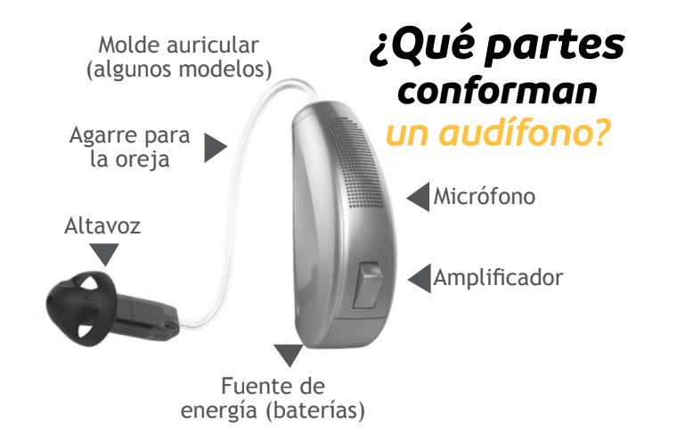 Descubre las partes de un audífono